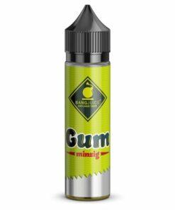 Bang Juice Longfill Aroma Gum Minzig 20ml
